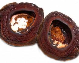 316.10 CTS YOWAH PHANTOM NUTS SPECIMEN-AUSTRALIA [MGW8086]
