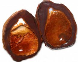 298.75 CTS YOWAH PHANTOM NUTS SPECIMEN-AUSTRALIA [MGW8089]