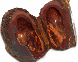 1207.10 CTS YOWAH PHANTOM NUTS SPECIMEN-AUSTRALIA [MGW8092]