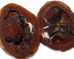 552.60 CTS YOWAH PHANTOM NUTS SPECIMEN-AUSTRALIA [MGW8096]