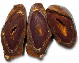 1747.70 CTS YOWAH PHANTOM NUTS SPECIMEN-AUSTRALIA [MGW8098]