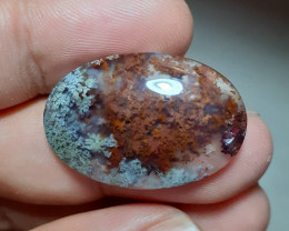 25.50 Ct MOSS AGATE PICTURE BUSH VIEW#