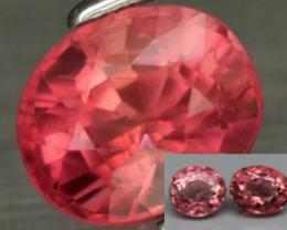 Pink Tourmaline   3PCS LOT   2.43ct tw  UNHEATED