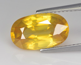 Foxy  Zircon 5.35 Cts Honey Yellow Step cut BGC747