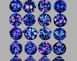 2.30 mm Round 16 pcs 1.00ct Purple Blue Sapphire [VVS]