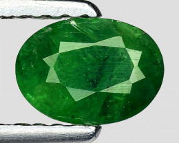 0.64 Crt Untreated Tsavorite Awesome Color ~ Africa TS31