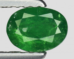 0.57 Crt Untreated Tsavorite Awesome Color ~ Africa TS39
