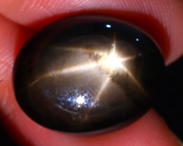 Star Sapphire 23.87Ct Natural 6 Rays Black Star Sapphire DR424/A53