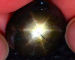 Star Sapphire 16.94Ct Natural 6 Rays Black Star Sapphire DR427/A53