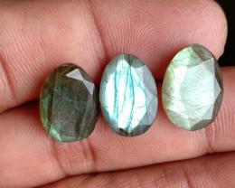 3 Pcs Labradorite Natural Gemstone Rose Cut Fancy VA4690
