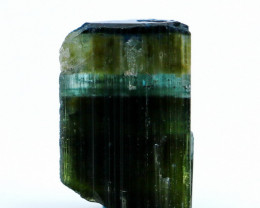 NR!!! 13.75 CTs Natural - Unheated Green Cap Tourmaline Crystal