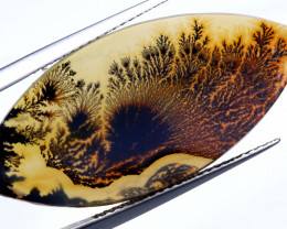 5.75 CTS AGATE DENDRITIC NICE PATTERNS  SG-476