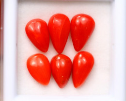 7.15Ct Natural Red Itali Coral Cabochon Lot A979