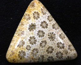 39.45 CTS CORAL INDONESIA   TBG-345