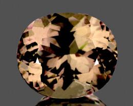 6.5x5.5 mm Oval 1.37cts Color Change Garnet [VVS]