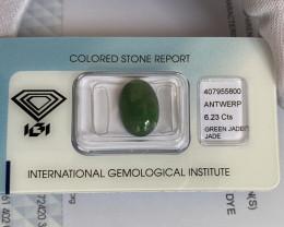 6.23ct Jadeite Jade 'A' Grade IGI CERTIFIED Deep Green Oval Cabochon Gem