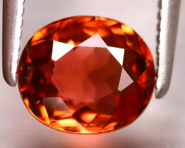 Tourmaline 1.37Ct Natural  Orange Tourmaline EF1216/B19