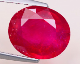 6.28ct Blood Red Color Ruby Oval Cut Lot GW7789