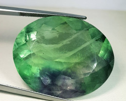 89.25 ct Excellent Gem  Beautiful Oval Cut Natural Bi Color Fluorite