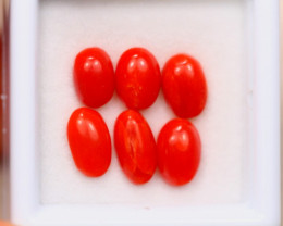 5.06Ct Natural Red Itali Coral Cabochon Lot A1011