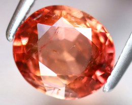 Tourmaline 1.62Ct Natural Orange Tourmaline DF1718/D3