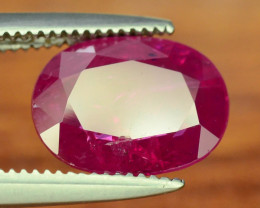 Tajikistan Ruby  ct 1.80 Unheated & Untreated