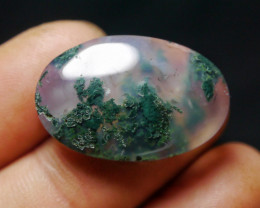 23.30 CT UNTREATED Beautiful Indonesian Moss Agate Picture