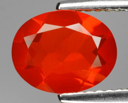 1.23 Cts Very Rare Unheated Mexican Fire Opal Loose Gemstones