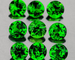 3.00 mm Round 9 pcs 1.12cts Chrome Green Diopside [VVS]