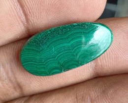 MALACHITE CABOCHON Natural+Untreated VA184
