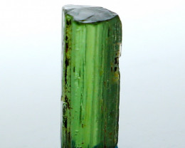 NR!!! 2.00 CTs Natural - Unheated Green Tourmaline Crystal