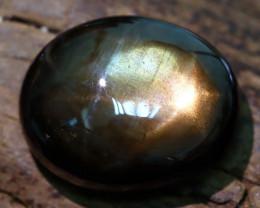Star Sapphire 5.92Ct Natural Thailand Golden Black Star Sapphire B2006