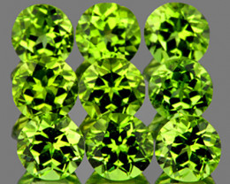 5.00 mm Round 9 pcs 4.67cts Green Peridot [VVS]