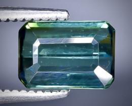 1.05 Crt  Tourmaline Faceted Gemstone (Rk-4)