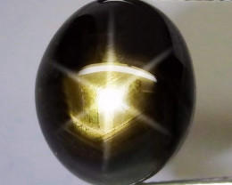 19.3 Carat Black Star Sapphire - Gorgeous