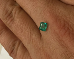 0,58ct Colombian Emeralds Ref 19/75 Colombian Emerald emerald Natural col