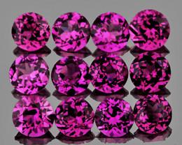 3.00 mm Round 12 pcs 1.60cts Magenta Purple Rhodolite [VVS}