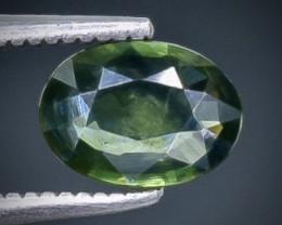 0.87 Crt  Sapphire Faceted Gemstone (Rk-5)