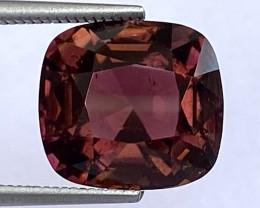 4.65Ct Tourmaline Amazing Cut Sparkiling Luster Quality Gemstone. TMF 08