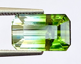 3.25Ct Tourmaline Bi-Colour Beautiful Faceted Gemstone. BTM 05