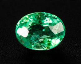 Emerald  0.24 ct Etiophia GPC