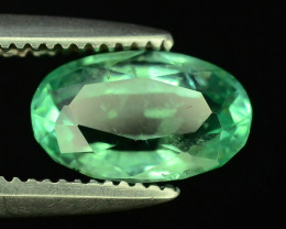 Top Color & Clarity 0.80 ct Emerald~Afghanistan M