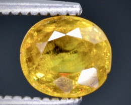 0.87 Crt  Sphene Faceted Gemstone (Rk-6)