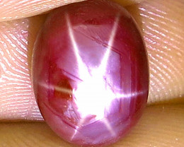 7.92 Carat Star Ruby Cabochon - Gorgeous