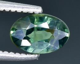 0.69 Crt Sapphire  Faceted Gemstone (Rk-7)