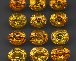 6.08Ct./12Pcs/Ravishing Color&Full Fire! Yellow Natural Sapphire Africa