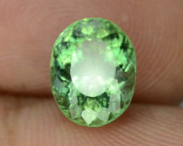 Great Luster 3.25 ct Green Apatite ~ T