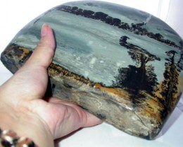 Impressionist Picture Stone from Nature 2700 gms [pfs06]