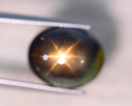 9.32Ct Natural 6 Rays Black Star Sapphire Lot V8025