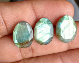 3 Pcs Labradorite Natural Gemstone Rose Cut Fancy VA798